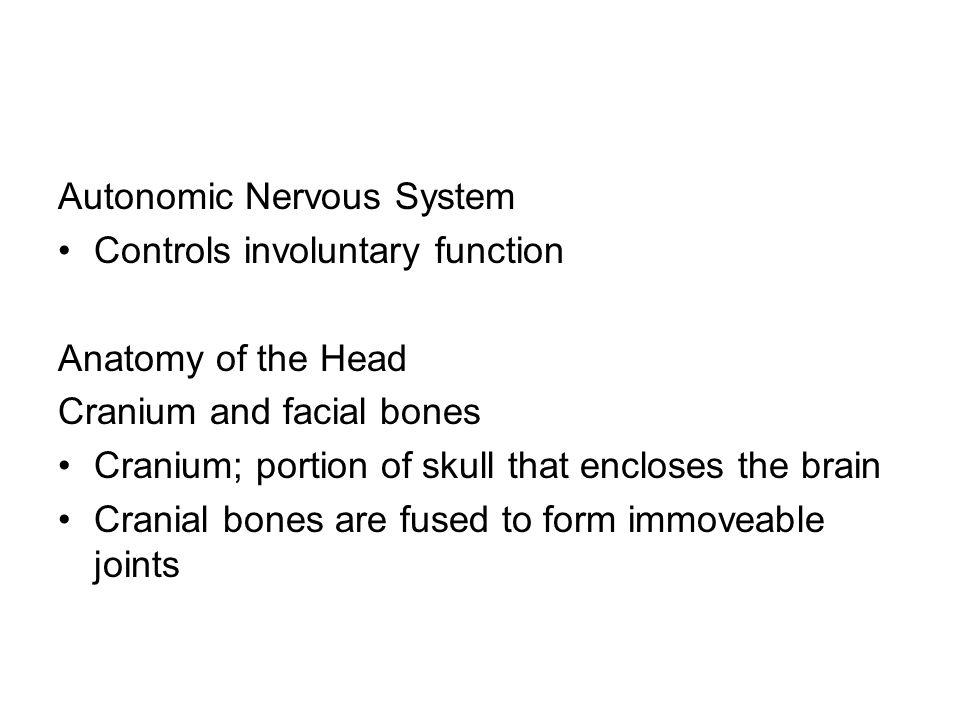 Autonomic Nervous System Controls involuntary function Anatomy of the Head Cranium and facial bones Cranium; portion of skull that encloses the brain