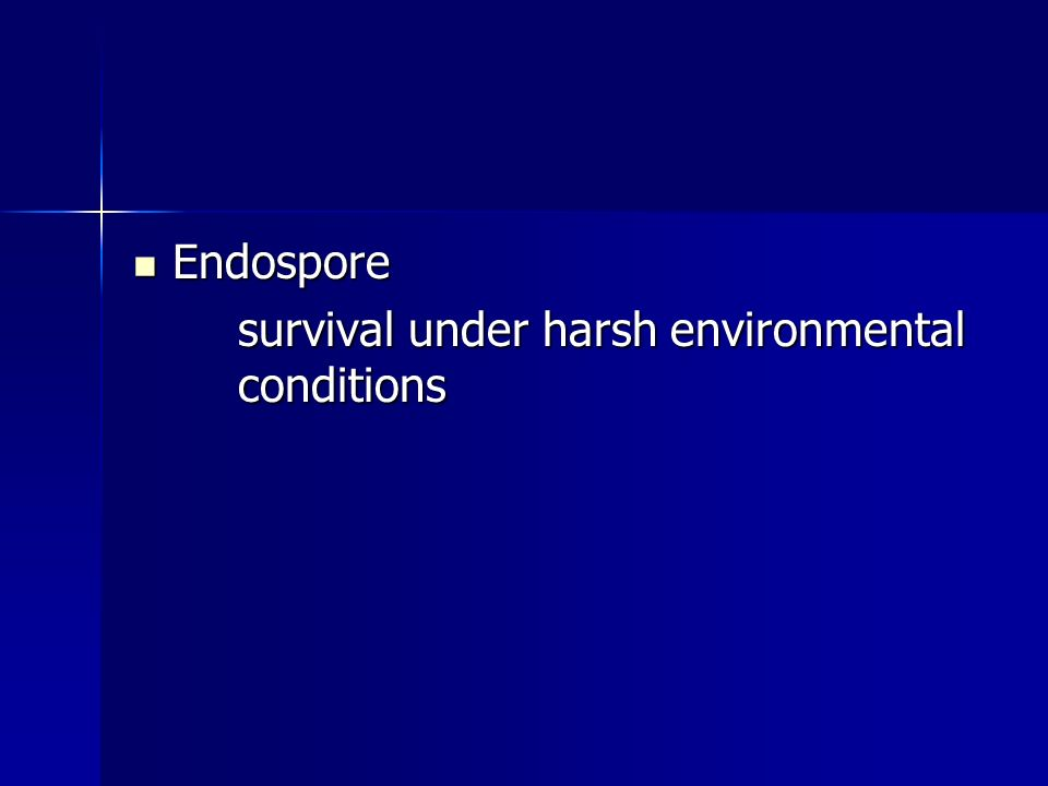 Endospore survival under harsh environmental conditions