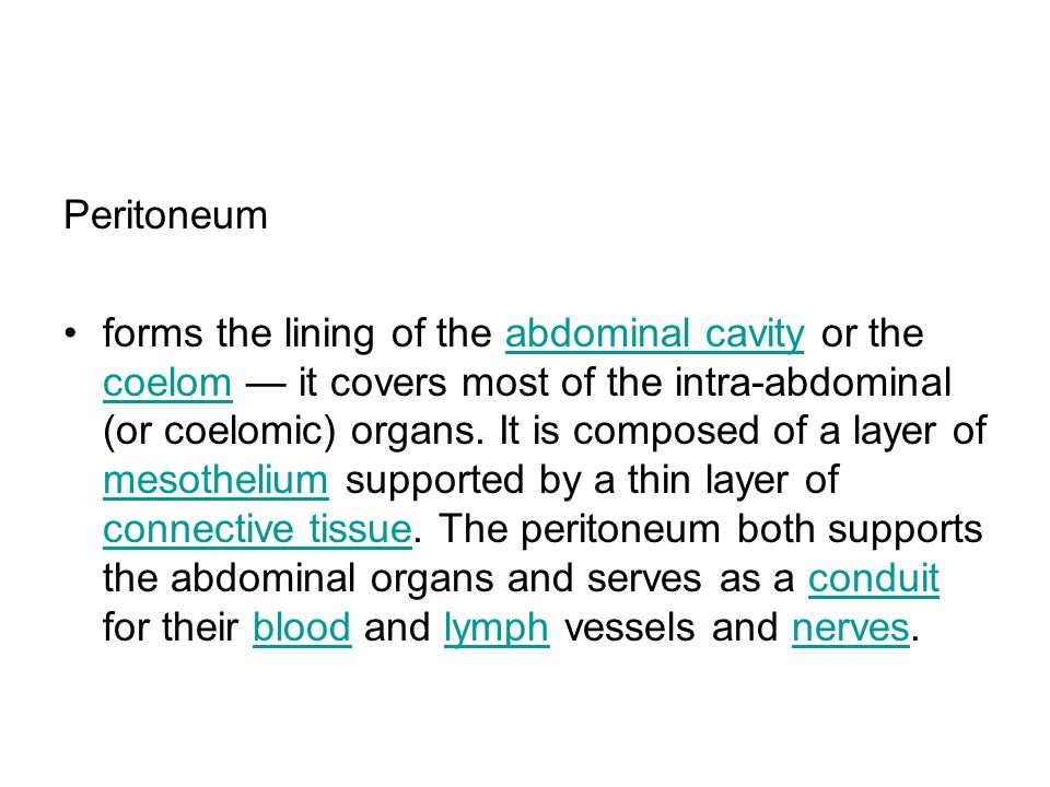 Peritoneum forms the lining of the abdominal cavity or the coelom it covers most of the intra-abdominal (or coelomic) organs. It is composed of a laye