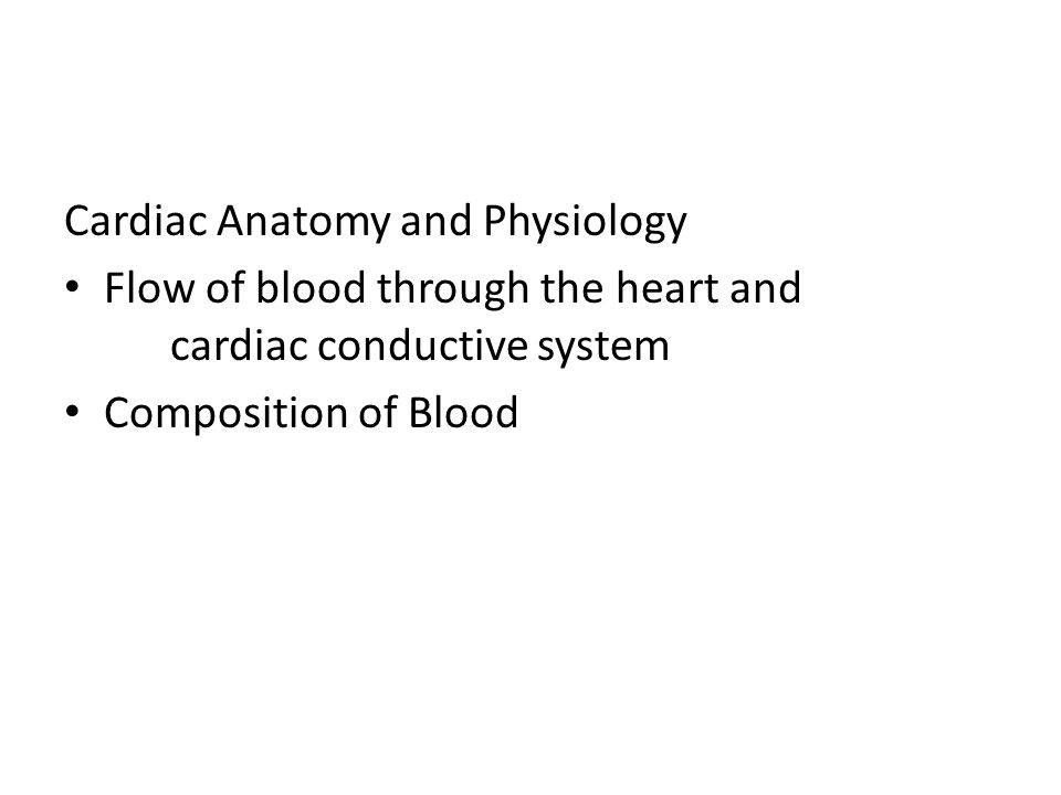 Cardiac Anatomy and Physiology Flow of blood through the heart and cardiac conductive system Composition of Blood