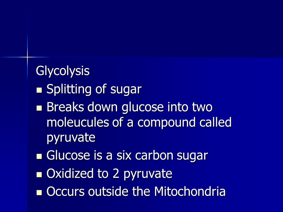 Glycolysis Splitting of sugar Splitting of sugar Breaks down glucose into two moleucules of a compound called pyruvate Breaks down glucose into two moleucules of a compound called pyruvate Glucose is a six carbon sugar Glucose is a six carbon sugar Oxidized to 2 pyruvate Oxidized to 2 pyruvate Occurs outside the Mitochondria Occurs outside the Mitochondria