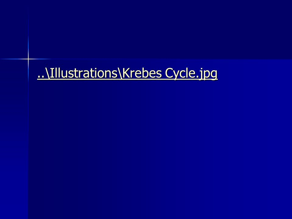 ..\Illustrations\Krebes Cycle.jpg..\Illustrations\Krebes Cycle.jpg