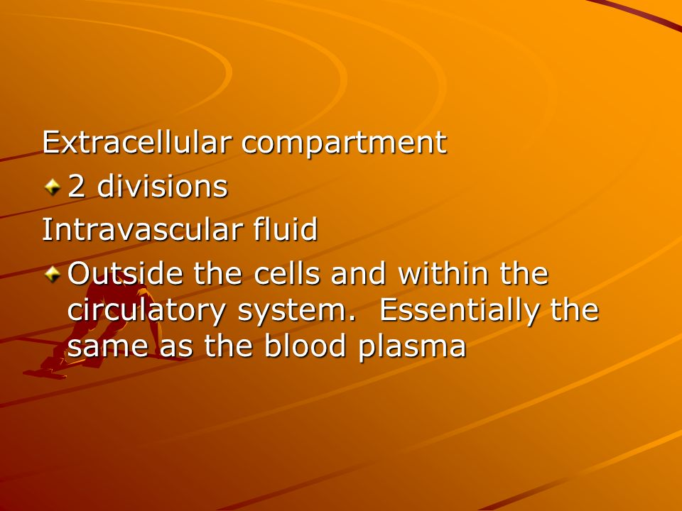 Extracellular compartment 2 divisions Intravascular fluid Outside the cells and within the circulatory system.
