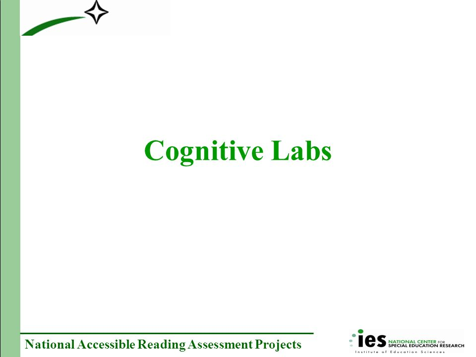 National Accessible Reading Assessment Projects Cognitive Labs