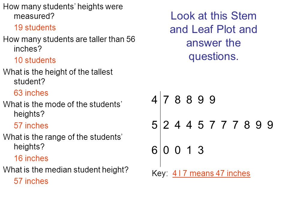How many students heights were measured? 19 students How many students are taller than 56 inches? 10 students What is the height of the tallest studen