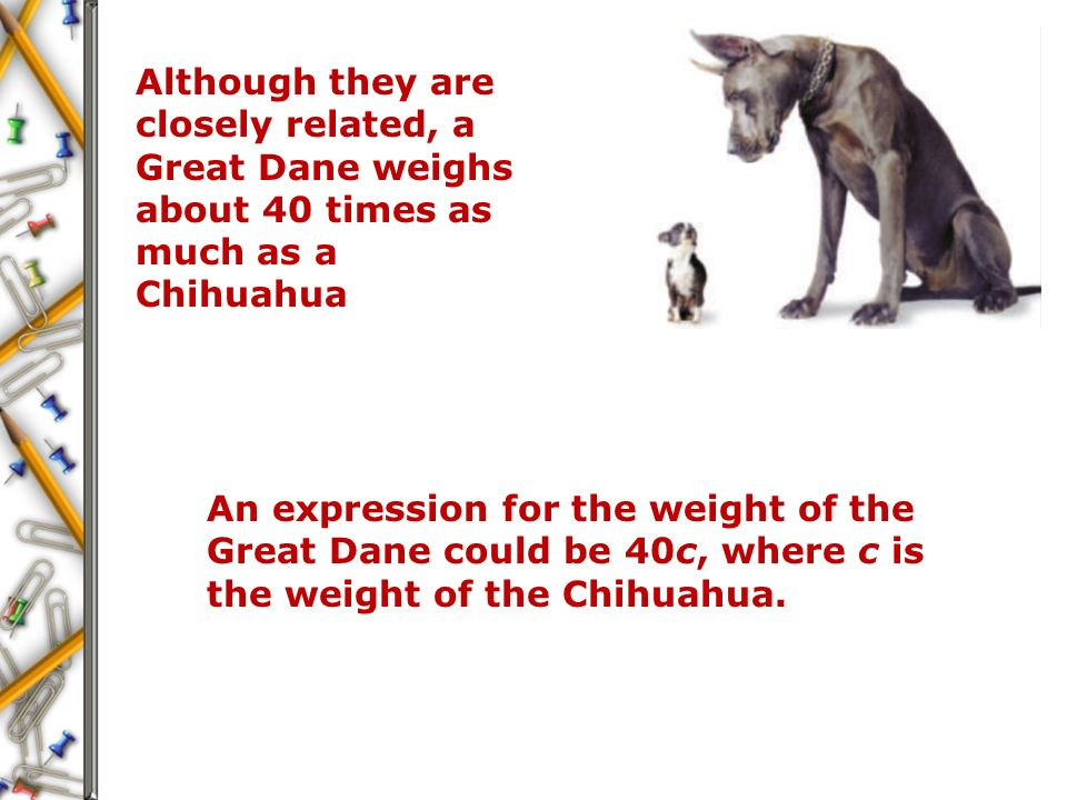 Although they are closely related, a Great Dane weighs about 40 times as much as a Chihuahua An expression for the weight of the Great Dane could be 40c, where c is the weight of the Chihuahua.