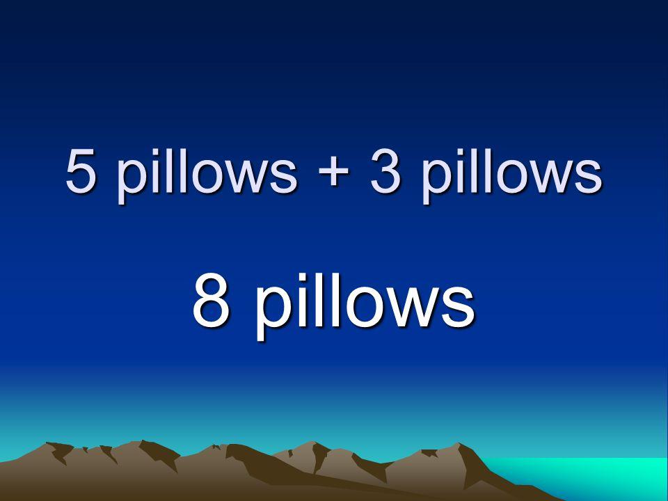5 pillows + 3 pillows 8 pillows