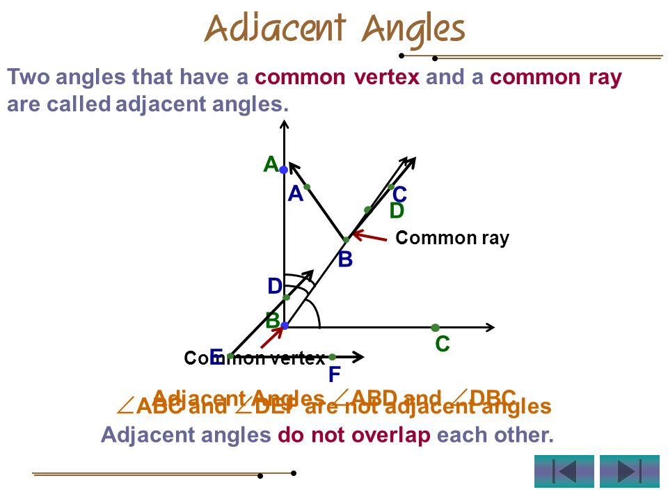 Adjacent Angles Two angles that have a common vertex and a common ray are called adjacent angles. C D B A Common ray Common vertex Adjacent Angles ABD