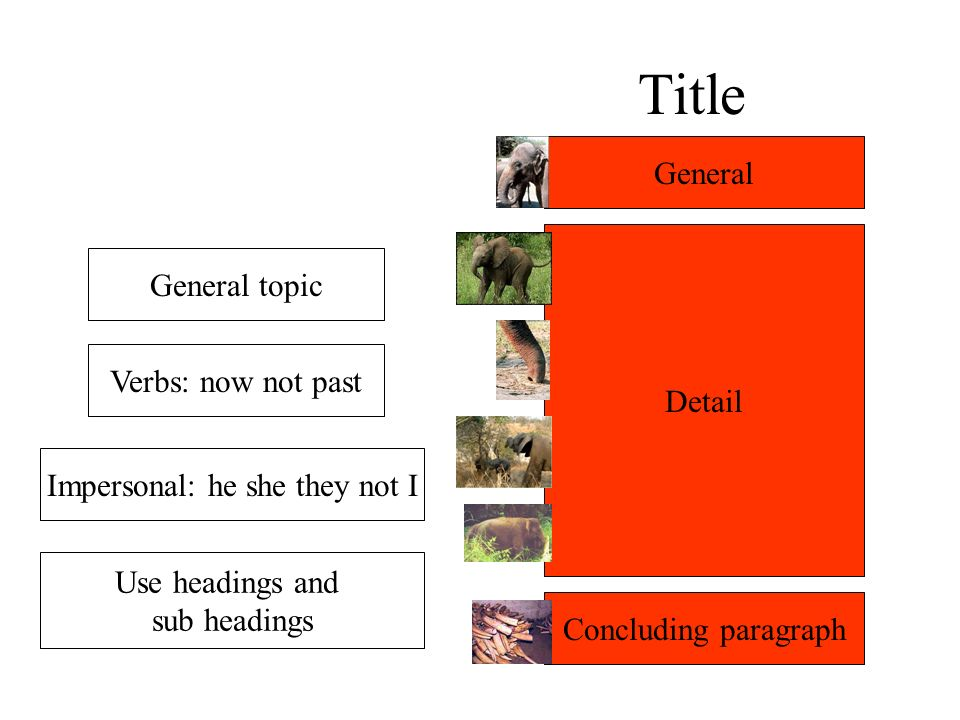 Title General topic Verbs: now not past Impersonal: he she they not I General Detail Concluding paragraph Use headings and sub headings