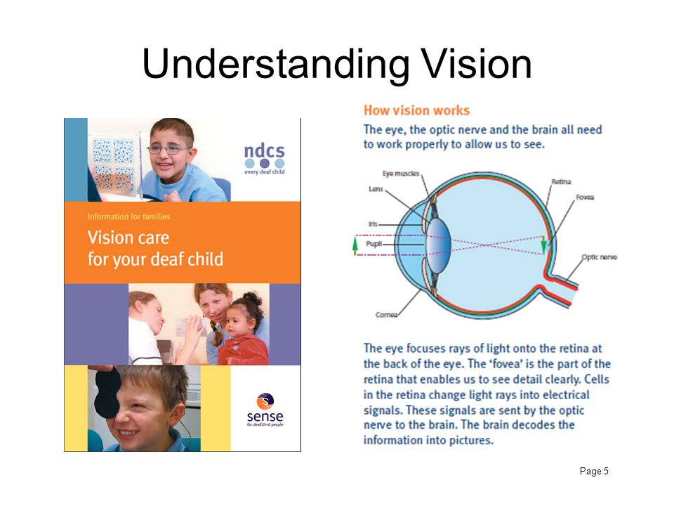 Understanding Vision Page 5