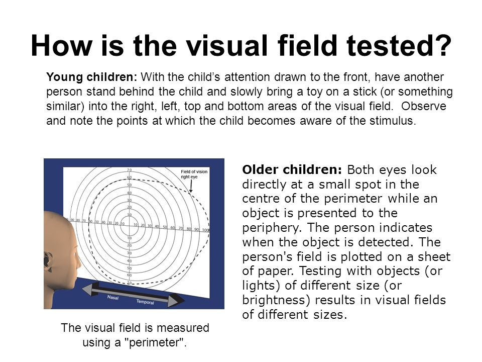 How is the visual field tested? Young children: With the childs attention drawn to the front, have another person stand behind the child and slowly br