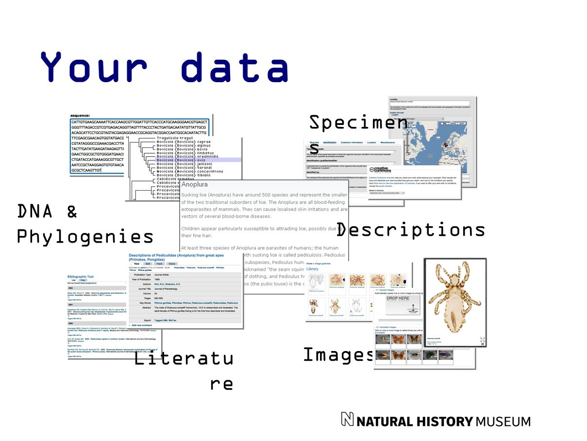 Your data Specimen s Images Literatu re DNA & Phylogenies Descriptions