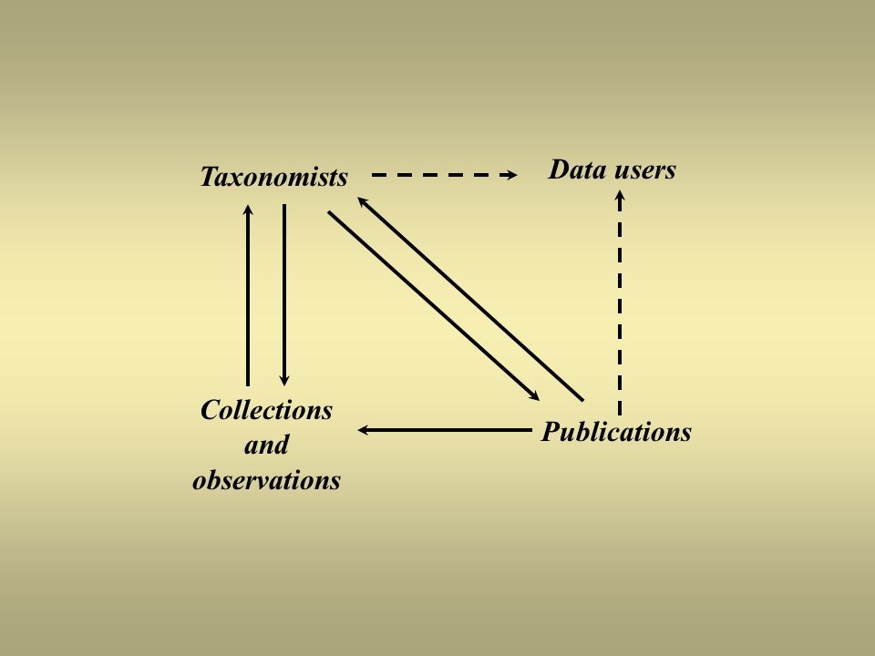 Taxonomists Data users Collections and observations Publications
