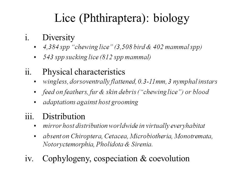 Lice (Phthiraptera): biology i.Diversity 4,384 spp chewing lice (3,508 bird & 402 mammal spp) 543 spp sucking lice (812 spp mammal) iv.Cophylogeny, co