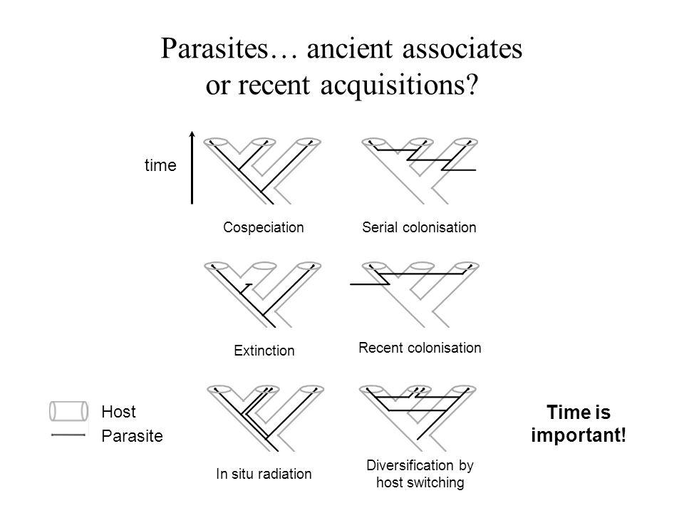 Parasites… ancient associates or recent acquisitions.