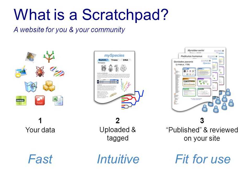 Your data 1 Published & reviewed on your site 3 Uploaded & tagged 2 FastIntuitiveFit for use What is a Scratchpad? A website for you & your community