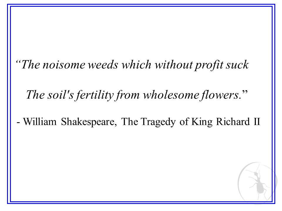 The noisome weeds which without profit suck The soil's fertility from wholesome flowers. - William Shakespeare, The Tragedy of King Richard II