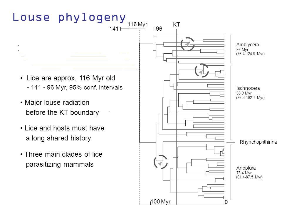 Lice and hosts must have a long shared history Louse phylogeny Amblycera 96 Myr (76.4-124.9 Myr) Ischnocera 88.9 Myr (76.3-102.7 Myr) Anoplura 73.4 Myr (61.4-87.5 Myr) Rhynchophthirina 0 100 Myr KT 96 141 116 Myr Three main clades of lice parasitizing mammals Lice are approx.