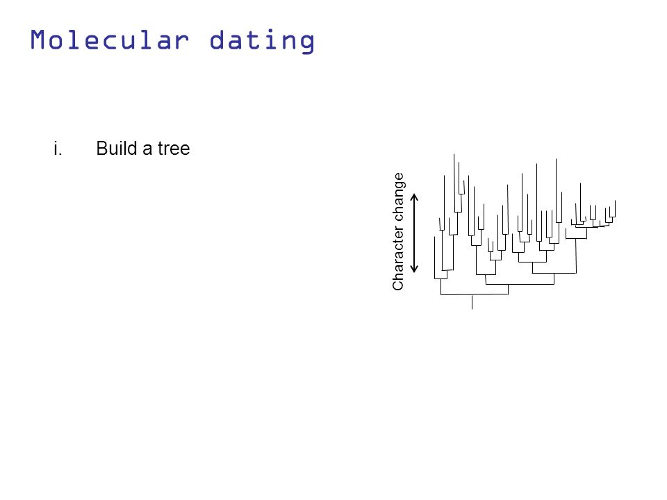 Molecular dating i.Build a tree Character change