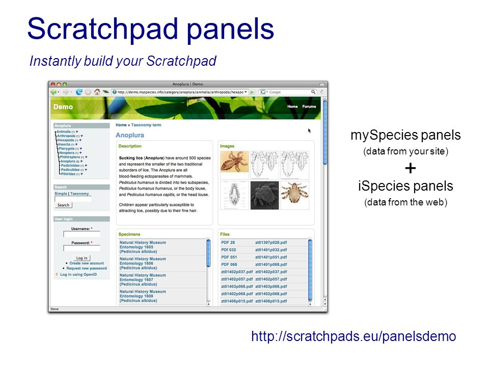 Scratchpad panels iSpecies panels (data from the web) mySpecies panels (data from your site)   Instantly build your Scratchpad +
