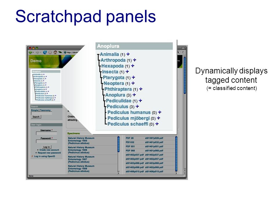 Scratchpad panels Dynamically displays tagged content (= classified content)