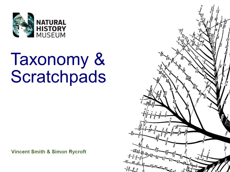 Vincent Smith & Simon Rycroft Taxonomy & Scratchpads