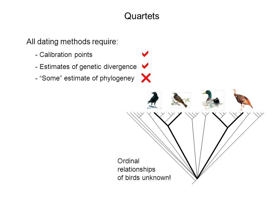 Quartets All dating methods require: - Calibration points - Estimates of genetic divergence - Some estimate of phylogeney Ordinal relationships of birds unknown!
