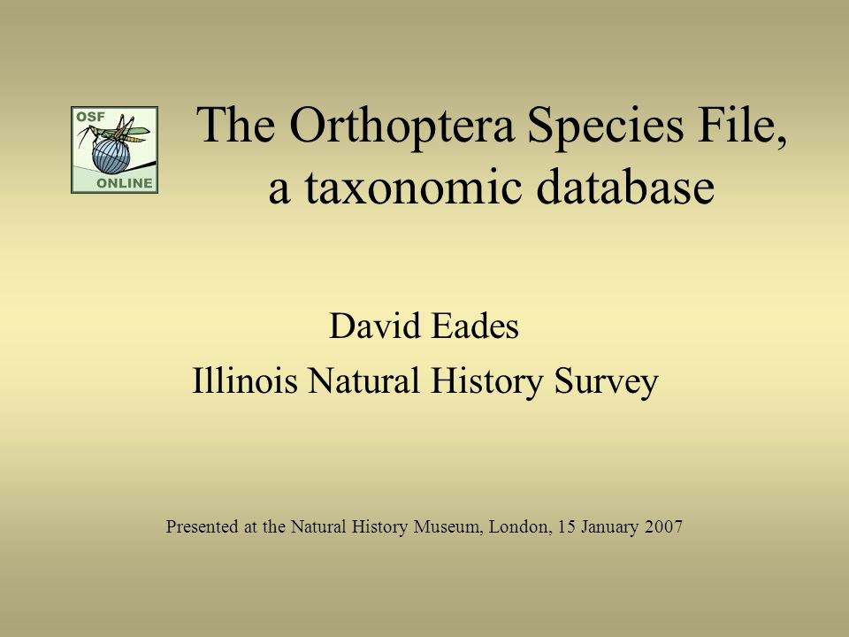 The Orthoptera Species File, a taxonomic database David Eades Illinois Natural History Survey Presented at the Natural History Museum, London, 15 Janu
