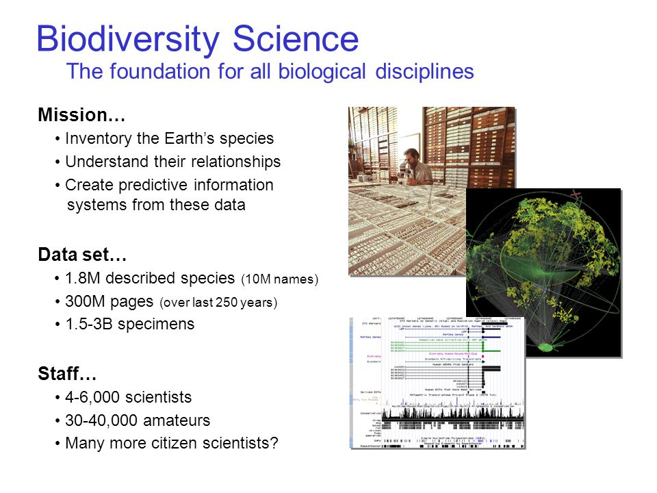 Biodiversity Science The foundation for all biological disciplines Mission… Inventory the Earths species Understand their relationships Create predictive information systems from these data Data set… 1.8M described species (10M names) 300M pages (over last 250 years) 1.5-3B specimens Staff… 4-6,000 scientists 30-40,000 amateurs Many more citizen scientists
