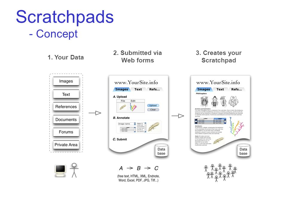 Scratchpads - Concept 1. Your Data 2. Submitted via Web forms 3. Creates your Scratchpad