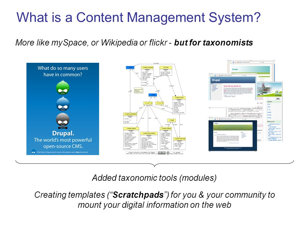 What is a Content Management System? More like mySpace, or Wikipedia or flickr - but for taxonomists Added taxonomic tools (modules) Creating template