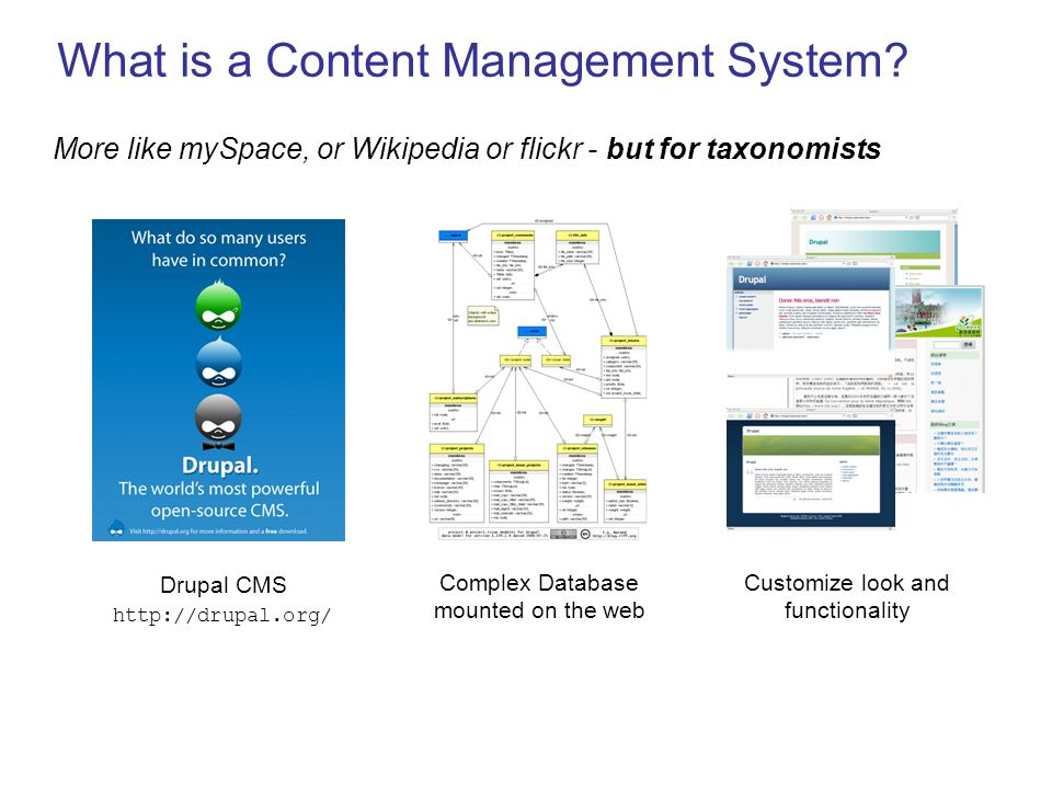 What is a Content Management System? More like mySpace, or Wikipedia or flickr - but for taxonomists Drupal CMS http://drupal.org/ Complex Database mo