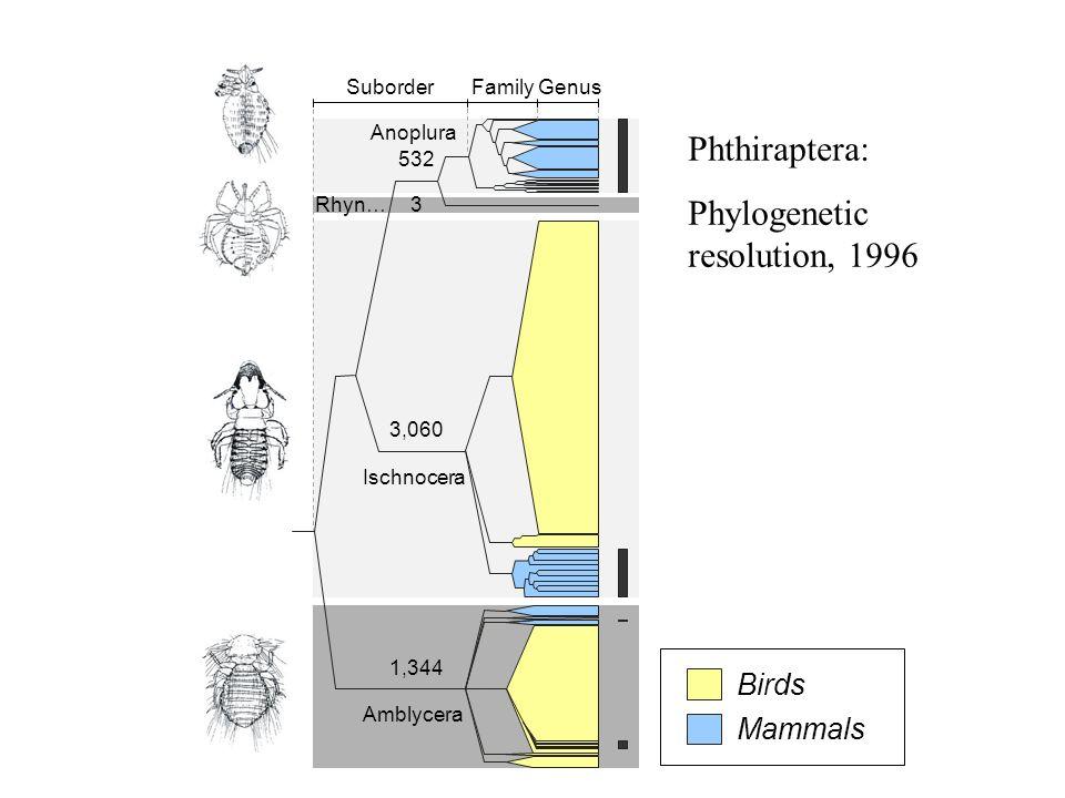 GenusFamilySuborder 3 532 3,060 1,350 Amblycera Ischnocera Anoplura Phthiraptera: Phylogenetic resolution, 2003 Rhyn… Mammals Birds