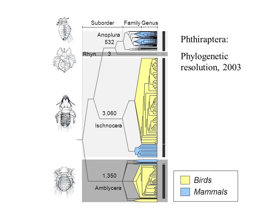 GenusFamilySuborder 3 532 3,060 1,344 Amblycera Ischnocera Rhyn… Anoplura 1996