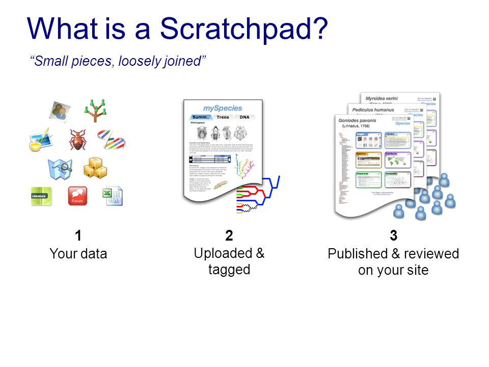 What is a Scratchpad? Your data 1 Published & reviewed on your site 3 Uploaded & tagged 2 Small pieces, loosely joined