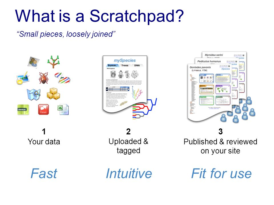 What is a Scratchpad? Your data 1 Published & reviewed on your site 3 Uploaded & tagged 2 FastIntuitiveFit for use Small pieces, loosely joined