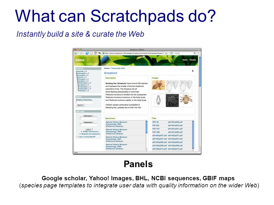 What can Scratchpads do? Instantly build a site & curate the Web Google scholar, Yahoo! Images, BHL, NCBI sequences, GBIF maps (species page templates