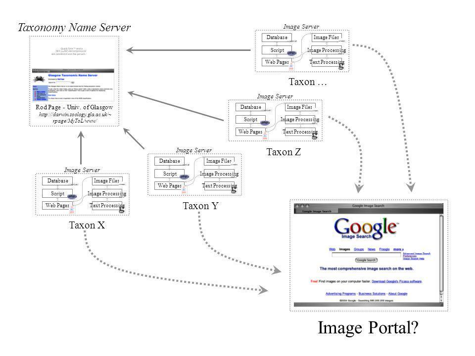 Database Script Web Pages Image Processing Image Files Text Processing Image Server Database Script Web Pages Image Processing Image Files Text Proces