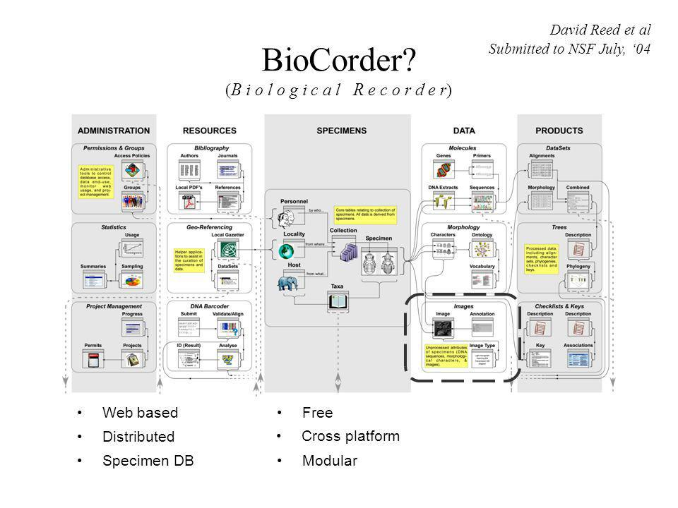 BioCorder? ( B i o l o g i c a l R e c o r d e r) Web based Distributed Specimen DB Cross platform Free Modular David Reed et al Submitted to NSF July