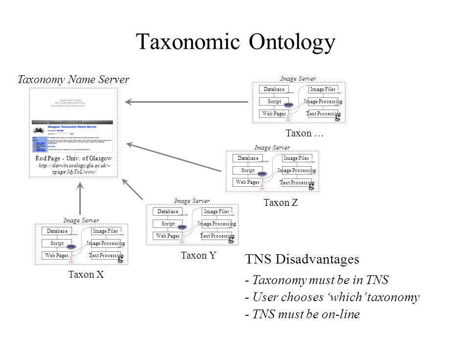 Centralized TNS Advantages - Maintains data quality - Common vocab. for searches via TNS - Minimizes data redundancy - Centralized taxonomy updates TN