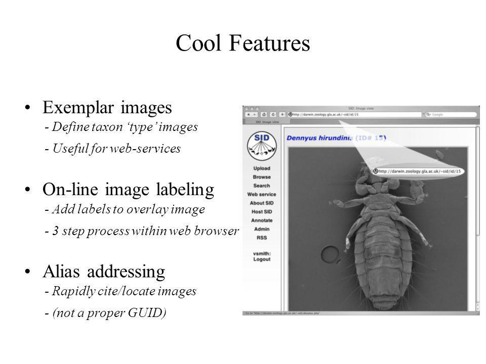 Cool Features Exemplar images - Define taxon type images - Useful for web-services On-line image labeling - Add labels to overlay image - 3 step process within web browser Alias addressing - Rapidly cite/locate images - (not a proper GUID)