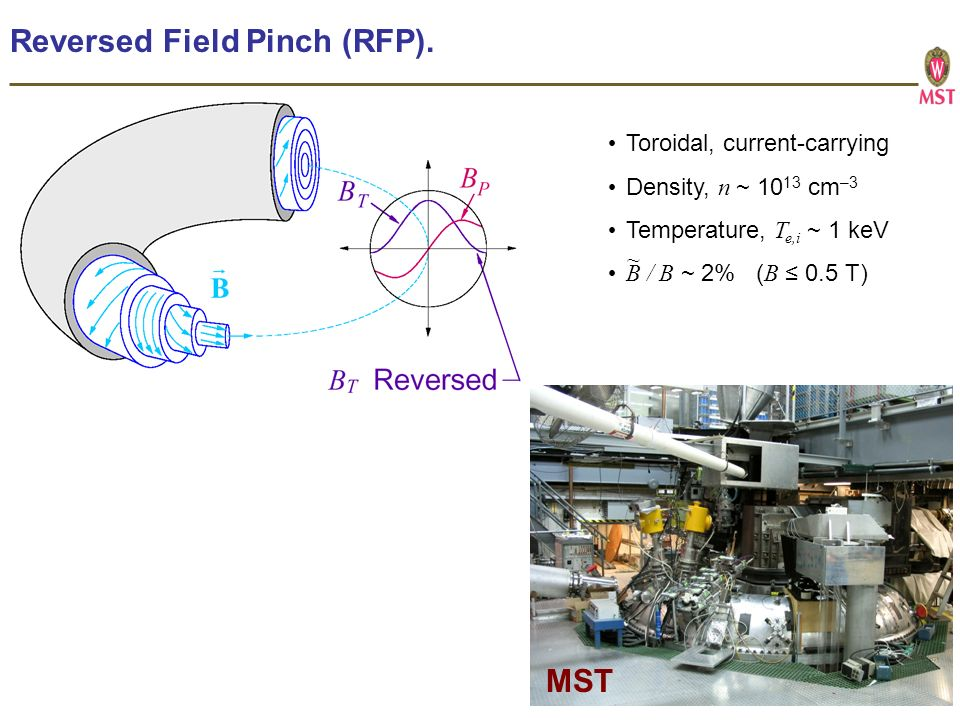 Reversed Field Pinch (RFP).
