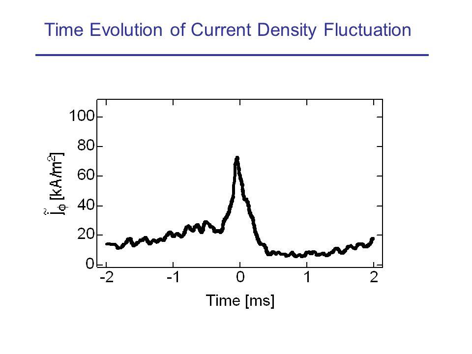 Time Evolution of Current Density Fluctuation