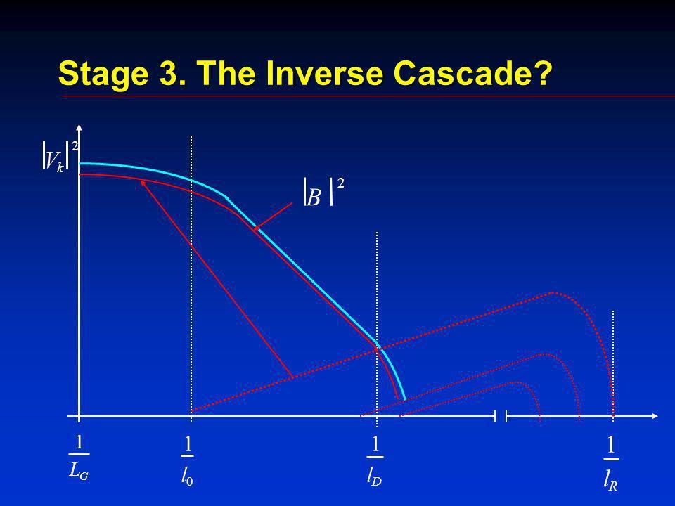 Stage 3. The Inverse Cascade? 1 L G 1 l 0 1 l D 1 l R V k 2 B 2