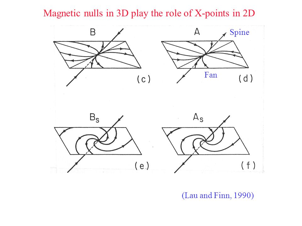 Magnetic nulls in 3D play the role of X-points in 2D Spine Fan (Lau and Finn, 1990)