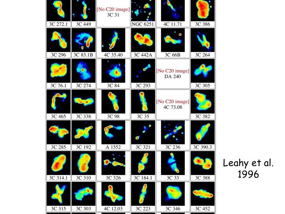 Leahy et al. 1996