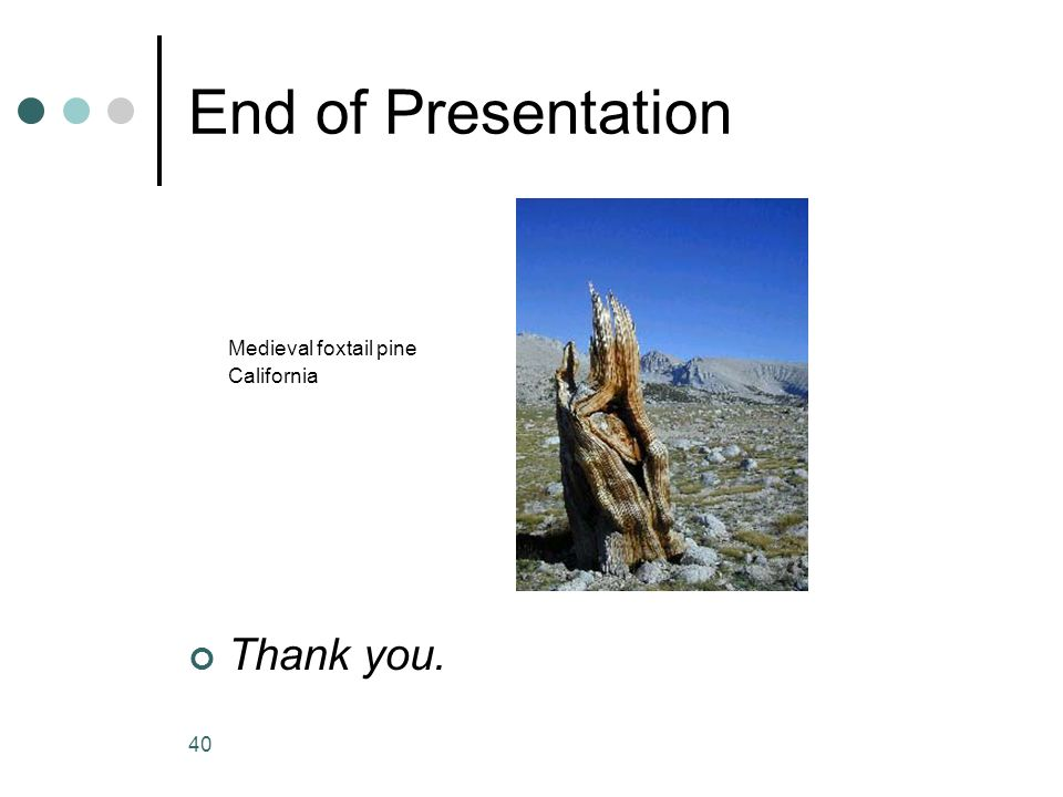 40 End of Presentation Medieval foxtail pine California Thank you.