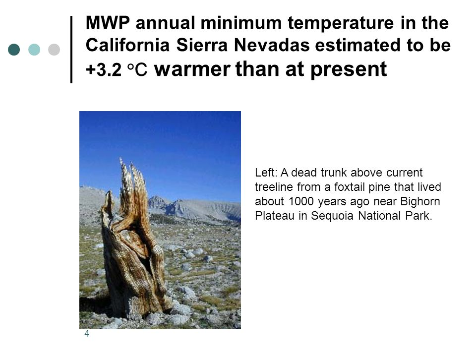 4 MWP annual minimum temperature in the California Sierra Nevadas estimated to be +3.2 °C warmer than at present Left: A dead trunk above current treeline from a foxtail pine that lived about 1000 years ago near Bighorn Plateau in Sequoia National Park.