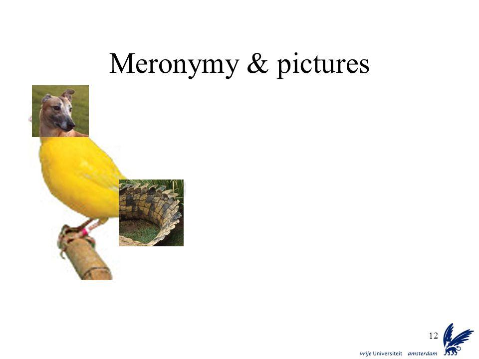 12 Meronymy & pictures