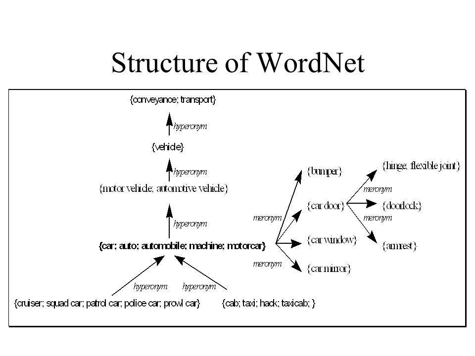 EuroWordNet Wordnets are unique language-specific structures: –different lexicalizations –differences in synonymy and homonymy –different relations between synsets –same organizational principles: synset structure and same set of semantic relations.